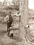Sugaring with Uncle Bob 1965